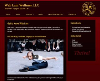 Methuen, MA SEO: Wah Lum Wellness, by Mxt Media.